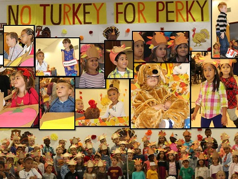 MCB no turkey for perky 2015.jpg